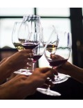 Набор бокалов для вина Cabernet Merlot Performance, 2 шт